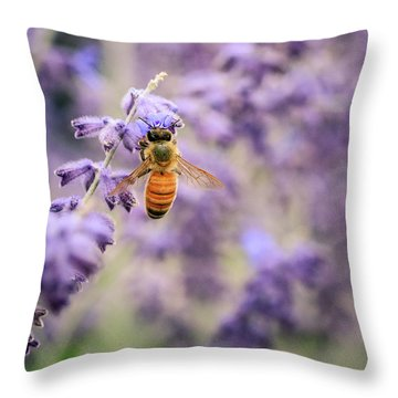 The Honey Bee And The Lavender Throw Pillow
