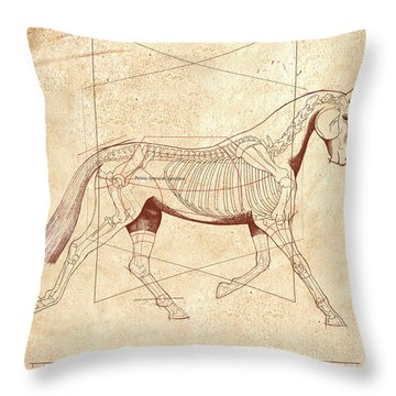 The Horse's Trot Revealed Throw Pillow by Catherine Twomey