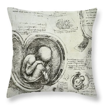 The Human Fetus In The Womb Throw Pillow