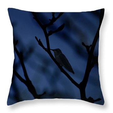 The Hummer Rests Throw Pillow