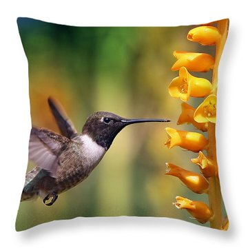 The Hummingbird And The Bee Throw Pillow by William Lee