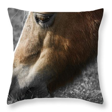 The Hungry Horse Throw Pillow