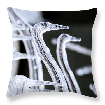 The Ice Birds Throw Pillow