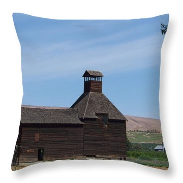 The Iconic Steeple Barn At Donald Throw Pillow