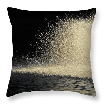 The Illusion Of Dark And Light With Water Throw Pillow