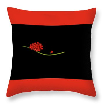 The Immigrant Throw Pillow