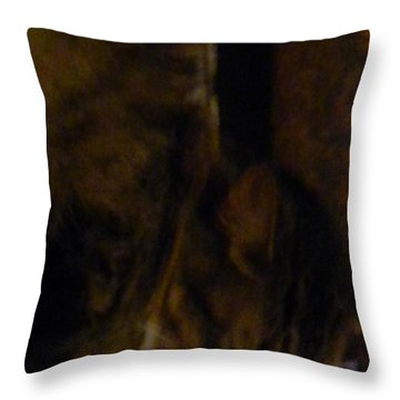 The Inn Creeper And His Pet Throw Pillow
