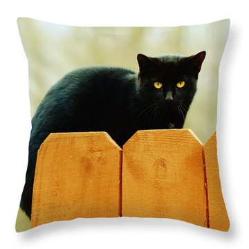 The Instigator Throw Pillow