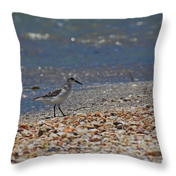 Throw Pillow featuring the photograph The Intellectual I by Michiale Schneider