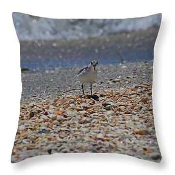 Throw Pillow featuring the photograph The Intellectual II by Michiale Schneider