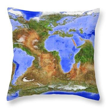 The Inverted World Throw Pillow