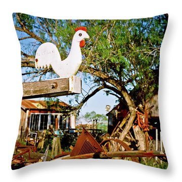 Throw Pillow featuring the photograph The Iron Chicken by Linda Unger