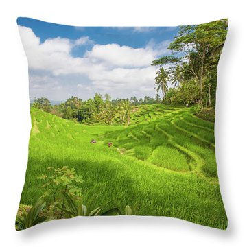 The Island Of God #14 Throw Pillow