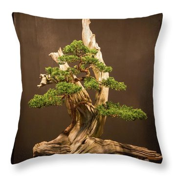The Japanese Art Of Bonsai 2 Throw Pillow