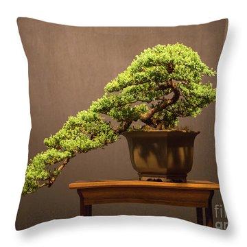 The Japanese Art Of Bonsai Throw Pillow