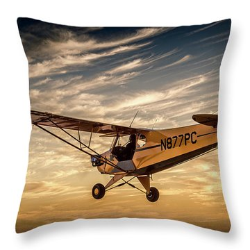 The Joy Of Flight Throw Pillow