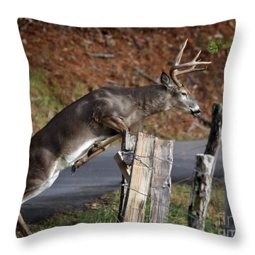 Throw Pillow featuring the photograph The Jumper by Douglas Stucky