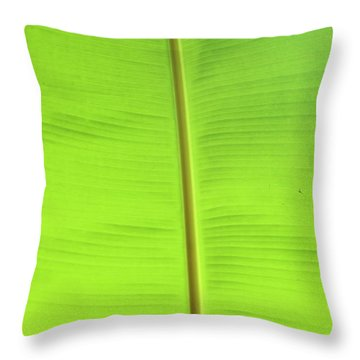 The Jungle Illuminated Throw Pillow