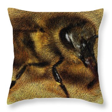 The Killer Bee Throw Pillow by ISAW Gallery