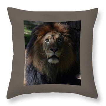 The King In Awe Throw Pillow by Ronda Ryan