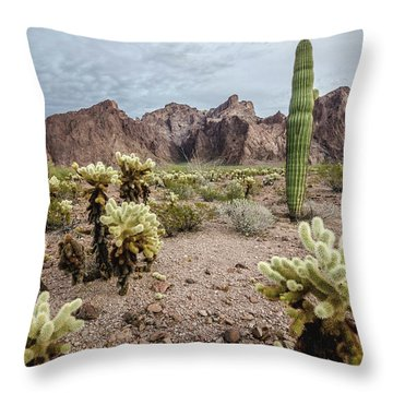The King Of Arizona National Wildlife Refuge Throw Pillow
