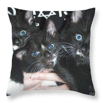 The Kittidiots Throw Pillow