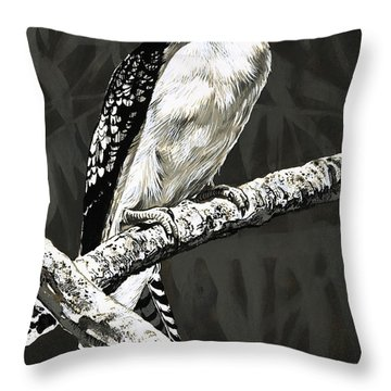 Designs Similar to The Kookaburra