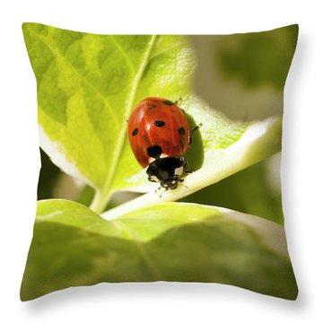 The Ladybug  Throw Pillow