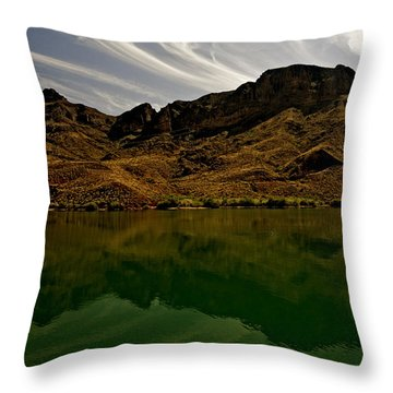 Reflecting   Throw Pillow by Gilbert Artiaga