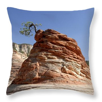 The Land Of Zion Throw Pillow by David Lee Thompson
