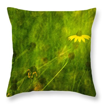 The Last Black-eyed Susan Throw Pillow