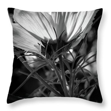 The Last Cosmos Throw Pillow