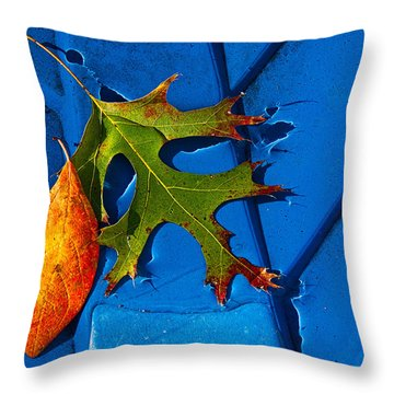 The Last Dance Throw Pillow by Christopher Holmes
