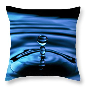 The Last Drop Throw Pillow