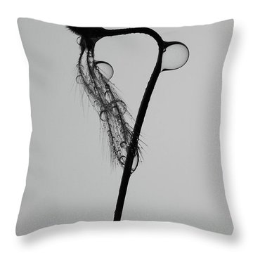 The Last Drop Of Me Throw Pillow