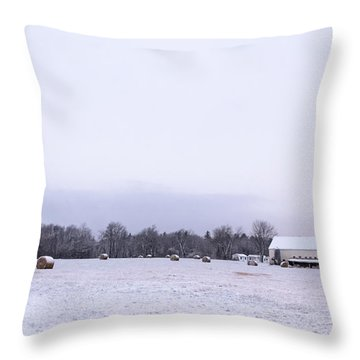 The Last Farm... Throw Pillow