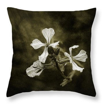 The Last Flowers Of Autumn Throw Pillow
