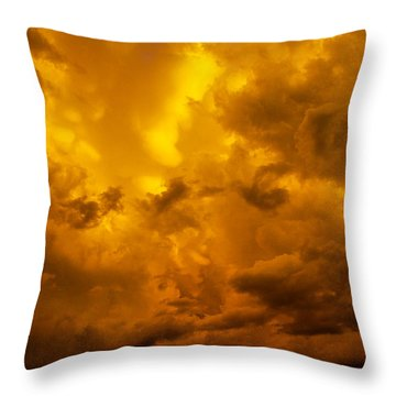 The Last Glow Of The Day 008 Throw Pillow