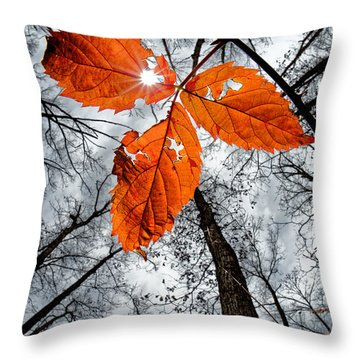 The Last Leaf Of November Throw Pillow by Robert Charity