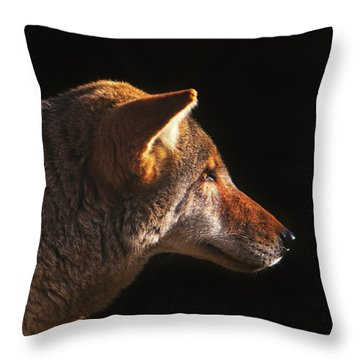 The Last Light Of Day  Throw Pillow
