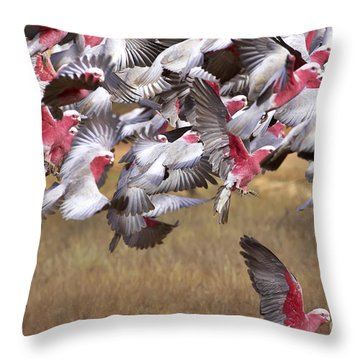 The Last One In The Air Throw Pillow by Bill  Robinson