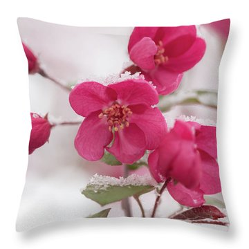 Throw Pillow featuring the photograph The Last Snowfall by Ana V Ramirez
