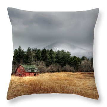 The Last Stand Throw Pillow by Lori Deiter