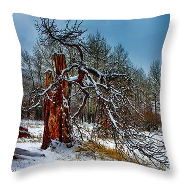 Throw Pillow featuring the photograph The Last Stand by Shane Bechler