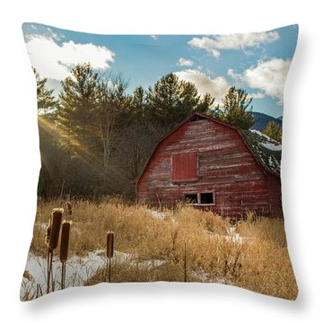 The Last Winter Throw Pillow