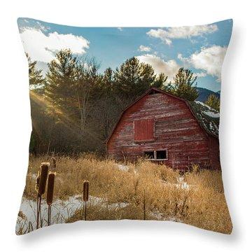 The Last Winter Throw Pillow