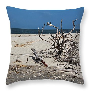 Throw Pillow featuring the photograph The Laws Of Gravity by Michiale Schneider