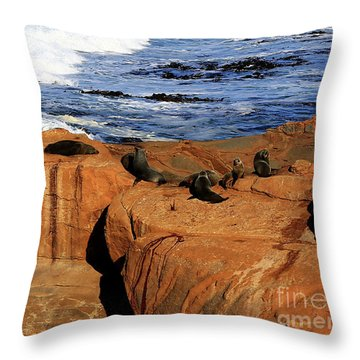 The Lazy Lounging Seals Throw Pillow