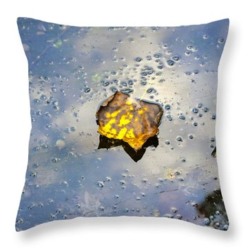 The Leaf And Liquid Sky Throw Pillow by Allen Carroll
