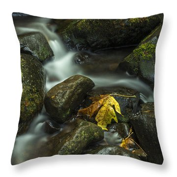 The Leaf Signed Throw Pillow